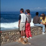 Dog Friendly La Jolla