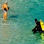 Divers at La Jolla Cove