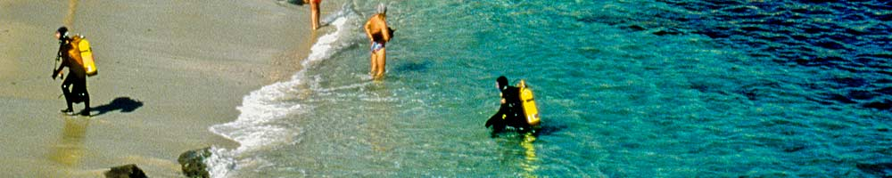 Divers at La Jolla Cove