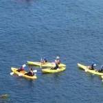 Kayakers at the Caves – La Jolla
