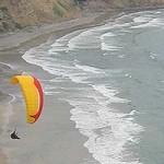Paraglider – Glider Port – Blacks Beach