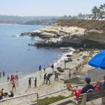 A Twenty-Something's La Jolla Beach Guide